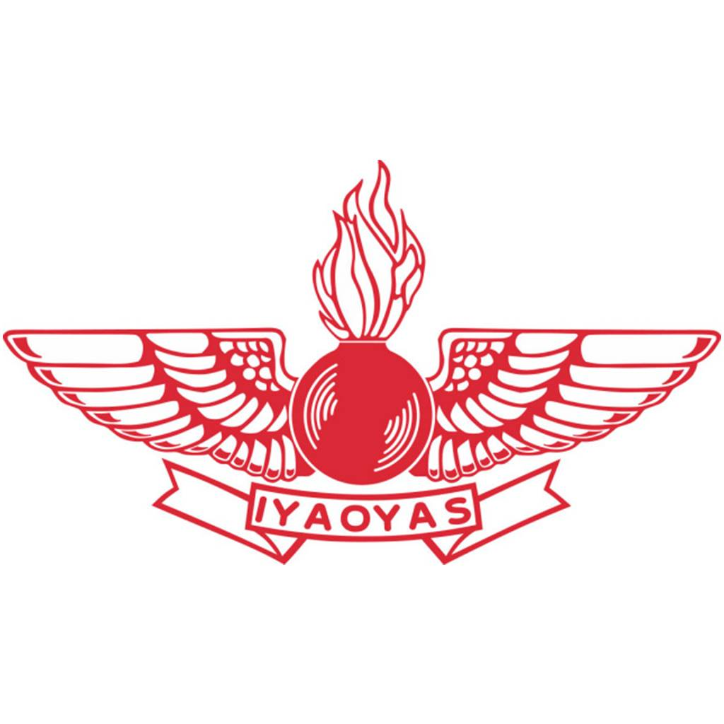 12-inch (Red) Aviation Ordnance Logo sticker with IYAOYAS ...