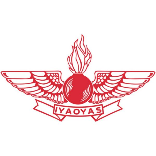 12 Inch Red Aviation Ordnance Logo Sticker With Iyaoyas